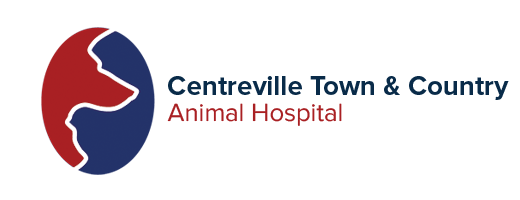 Centreville Town & Country Animal Hospital